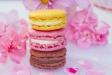 Macarons - Fine foods
